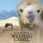 Die Geschichte vom weinenden Kamel – La historia del camello que llora 2003