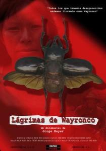Lágrimas de Wayronco, documental sobre la violencia en Perú